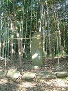 fukutomi1-9.jpg